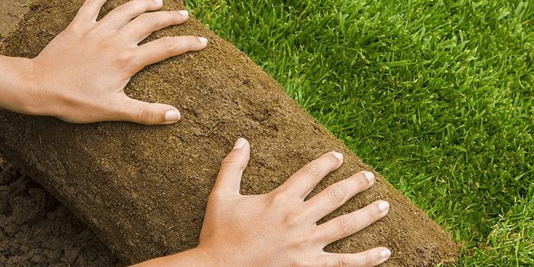 Artificial Grass Installation Services!