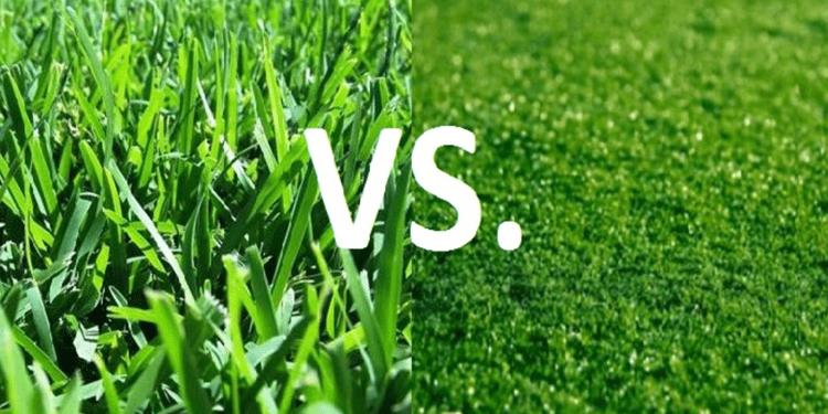 Conclusion Of Artificial Grass Vs Natural Grass