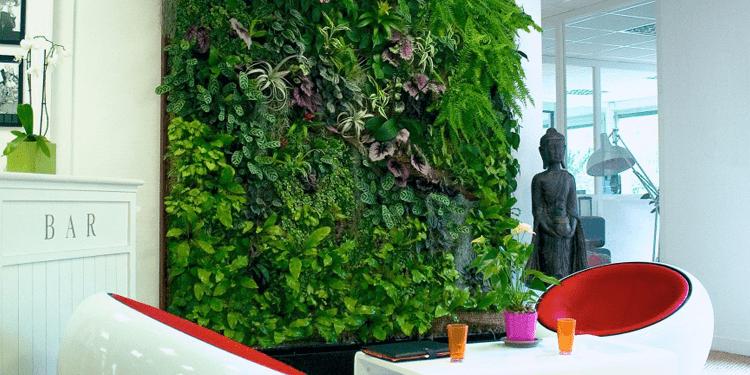 The Legit Benefits Of Living Green Walls